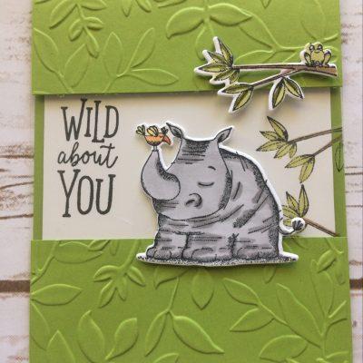 Animal Outings Samples