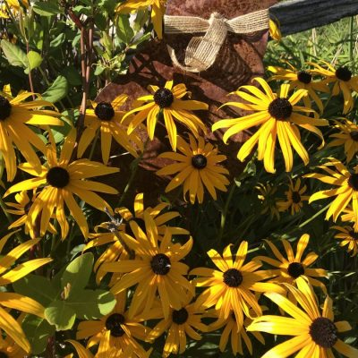 Late Summer Garden Inspiration- Take 2