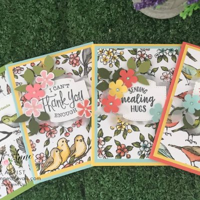 Quick and Easy Cards Using Bird Ballad Designer Series Paper