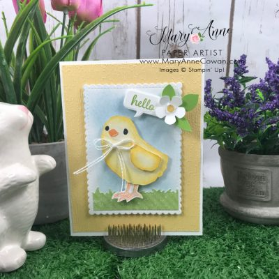 Adorable Chick Card