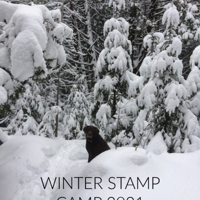 WINTER STAMP CAMP!